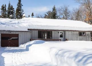 Foreclosed Home en LITTLE PORTAGE LAKE RD, Land O Lakes, WI - 54540