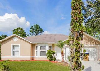 Casa en ejecución hipotecaria in Kissimmee, FL, 34758,  PETERLEE CT ID: F4386495
