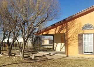 Foreclosure Home in El Paso county, TX ID: F4390532