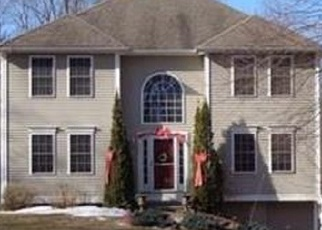 Foreclosed Home in ETHAN ALLEN RD, Litchfield, CT - 06759