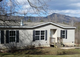 Foreclosed Home en OAK LN, Luray, VA - 22835