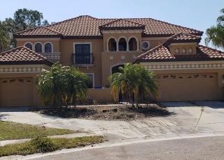 Foreclosed Home en PERGOLA BEND LN, Tampa, FL - 33647