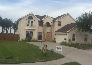 Foreclosed Home in SANTA TERESA, Mission, TX - 78572