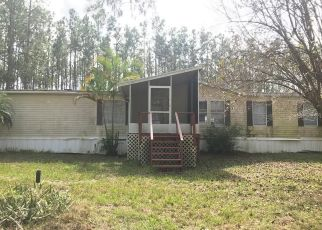 Foreclosed Home en LOST LAKE RD, Clermont, FL - 34711