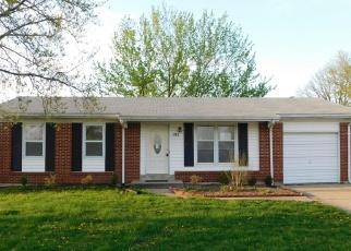 Foreclosed Home en BEDFORD DR, Warrenton, MO - 63383