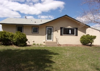 Foreclosed Home en 123RD AVE NE, Minneapolis, MN - 55449