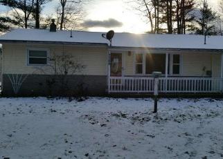 Foreclosed Home en N BRANCH DR, Beaverton, MI - 48612