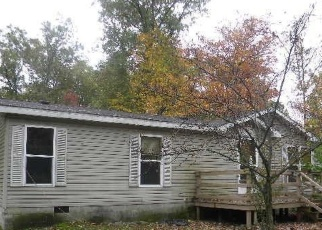 Foreclosed Home en E WILKE RD, Rothbury, MI - 49452