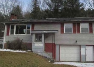 Foreclosed Home en BROOKY HOLLOW RD, Middleburgh, NY - 12122