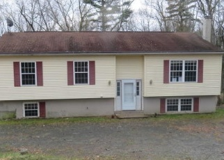 Foreclosed Home en JUNIPER DR, Milford, PA - 18337