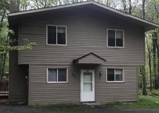 Foreclosed Home en SELIG RD, Pocono Lake, PA - 18347