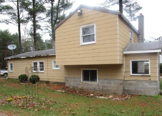 Foreclosed Home en E TYLER RD, Walkerville, MI - 49459