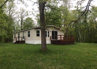 Casa en ejecución hipotecaria in Cass Condado, MN ID: F4403420