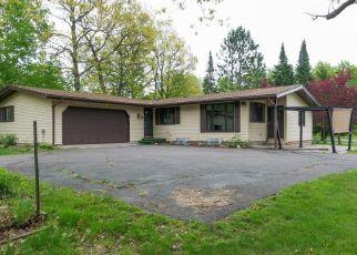 Casa en ejecución hipotecaria in Mille Lacs Condado, MN ID: F4405959