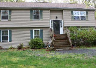 Casa en ejecución hipotecaria in East Stroudsburg, PA, 18302,  LITTLE BEAR LN ID: F4406290