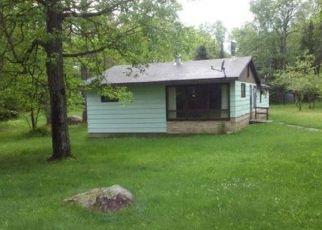 Casa en ejecución hipotecaria in Ely, MN, 55731,  CHESTNUT DR ID: F4410299