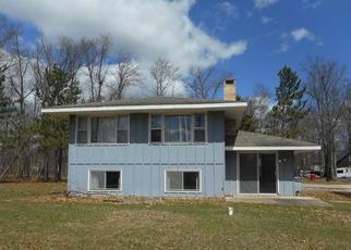 Casa en ejecución hipotecaria in Crow Wing Condado, MN ID: F4411741