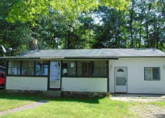Foreclosure Home in Alcona county, MI ID: F4411798