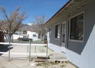 Foreclosed Homes in Hawthorne, NV, 89415, ID: F4419325