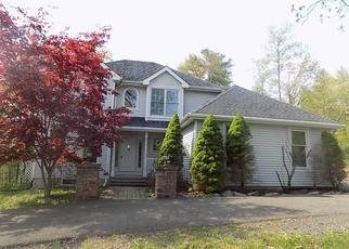 Foreclosed Homes in East Stroudsburg, PA, 18301, ID: F4421178