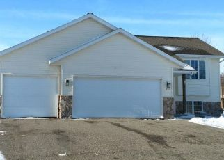 Foreclosure Home in Sibley county, MN ID: F4423425