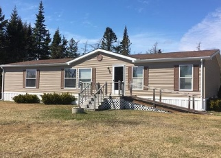 Foreclosure Home in Washington county, ME ID: F4423644