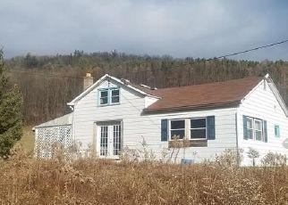 Casa en ejecución hipotecaria in Potter Condado, PA ID: F4424692