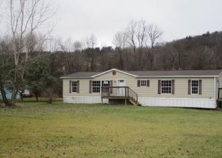 Casa en ejecución hipotecaria in Steuben Condado, NY ID: F4424706