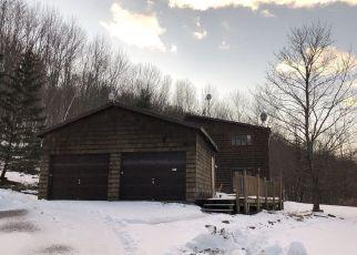 Casa en ejecución hipotecaria in Oneonta, NY, 13820,  SWART HOLLOW RD ID: F4424712