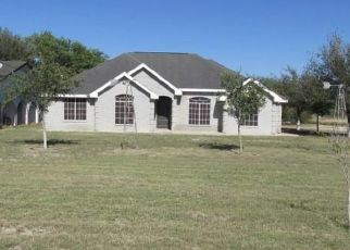 Foreclosure Home in Hidalgo county, TX ID: F4425052
