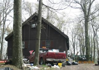 Casa en ejecución hipotecaria in Canadensis, PA, 18325,  SKYLINE DR ID: F4425700