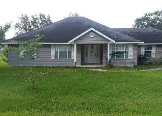Casa en ejecución hipotecaria in Hilliard, FL, 32046,  W 10TH AVE ID: F4434707