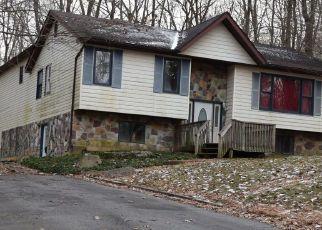 Casa en ejecución hipotecaria in Pocono Lake, PA, 18347,  SKI TRL ID: F4438415