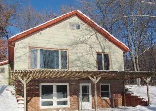 Foreclosure Home in Polk county, WI ID: F4444407