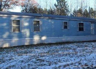 Casa en ejecución hipotecaria in Danbury, WI, 54830,  N RIVER RD ID: F4445891
