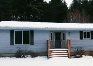 Foreclosure Home in Eagle River, WI, 54521,  O NEIL RD ID: F4446335