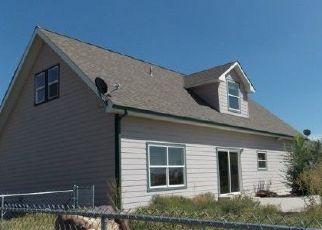 Foreclosure Home in Delta county, CO ID: F4446716