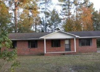 Casa en ejecución hipotecaria in Hampton Condado, SC ID: F4446719