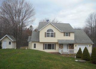 Casa en ejecución hipotecaria in Long Pond, PA, 18334,  HORIZON DR ID: F4454550