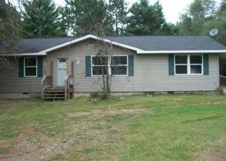 Foreclosure Home in Eagle River, WI, 54521,  ILLINOIS RD ID: F4455593