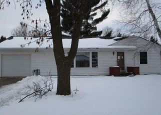 Foreclosure Home in Le Sueur county, MN ID: F4461077