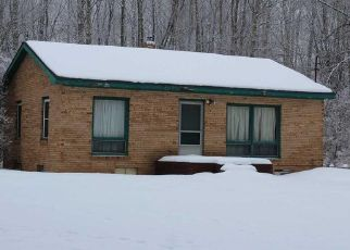 Foreclosure Home in Alcona county, MI ID: F4461139