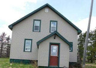 Casa en ejecución hipotecaria in Langlade Condado, WI ID: F4462105