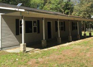 Casa en ejecución hipotecaria in Levy Condado, FL ID: F4463732