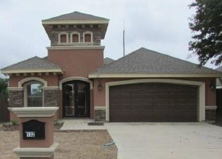 Foreclosure Home in Hidalgo county, TX ID: F4463767