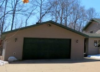 Foreclosure Home in Crow Wing county, MN ID: F4465593