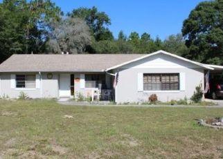 Casa en ejecución hipotecaria in Dunnellon, FL, 34433,  N JUSTA DR ID: F4465996