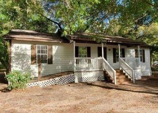 Casa en ejecución hipotecaria in Freeport, FL, 32439,  INEZ CIR ID: F4469451
