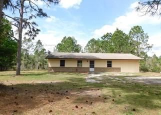 Casa en ejecución hipotecaria in Geneva, FL, 32732,  W GARON CV ID: F4477017