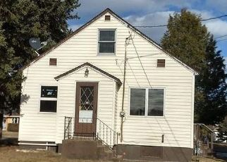 Foreclosure Home in Saint Louis county, MN ID: F4487014